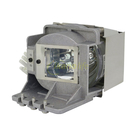 BenQ-OEM副廠投影機燈泡5J.JEL05.001/適用機型TH670