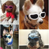 寵物眼鏡 寵物眼鏡泰迪墨鏡狗狗金毛小型犬狗防風鏡搞怪貓咪太陽鏡酷貓眼鏡 雙12