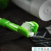 寵物牙刷牙漬除口臭狗狗寵物貓咪泰迪潔齒牙可食用【千尋之旅】
