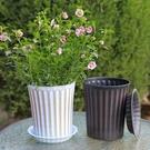 2個裝 花盆仿古列刷漆天竺葵草花月季盆花盆塑料花盆