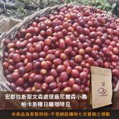 【咖啡綠商號】宏都拉斯聖文森處理廠尼爾森小農帕卡斯種日曬咖啡豆(一磅)