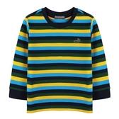 ~小鱷魚 ~條紋T 恤01 號10 號554436