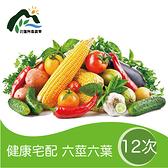 【鮮食優多】花蓮壽豐有機蔬菜箱(健康套餐)-配送12次
