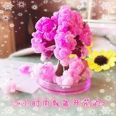 櫻花樹會開花的魔法樹紙樹開花聖誕樹玩具聖誕節創意結晶樹小禮品【快速出貨八折免運】
