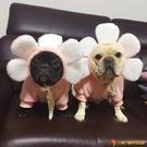 寵物狗狗衣服胖狗法斗中小型犬連帽衫花花搞笑拍照變身裝【小獅子】