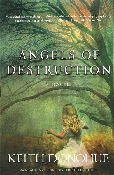 (二手書)Angels of Destruction