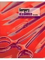 二手書博民逛書店 《Surgery at a Glance》 R2Y ISBN:140513187X│PierceA.Grace