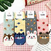 【KP】韓國 22-26cm 可愛動物 滿版 水果 狗 貓 兔 熊 成人襪 直版襪 襪子 DTT100007733