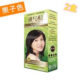 【ALLONE34】(2盒特價組) 優兒髮 泡泡染髮劑-栗子色 (加碼送1小盒)