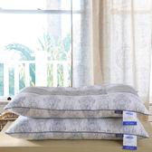 磁療枕護頸椎保健枕單人學生枕一只裝