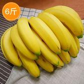 天賦・有機香蕉 6斤