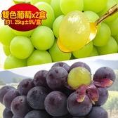果之家 特選A級日本空運無籽雙色葡萄綜合禮盒組x2盒(約1.25kg±5%/盒)