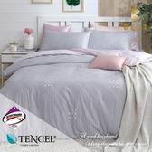 天絲床包兩用被四件組 特大6x7尺 西芙  頂級天絲 3M吸濕排汗專利 床高35cm   BEST寢飾