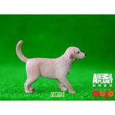 【Mojo Fun 動物星球】家庭動物-黃金獵犬幼犬 387205
