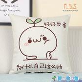 原創意抱枕可拆洗沙發床頭靠墊辦公室沙發汽車護腰枕LY3210『愛尚生活館』