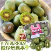 【果之蔬-全省免運】紐西蘭Kiwi berries寶貝奇異果X6盒【每盒125g±10%】