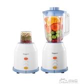 110V電動果汁機 家用水果榨汁機 好樂匯