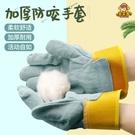 倉鼠手套防咬玩具寵物金絲熊刺猬鬆鼠魚龜抓捕網荷蘭豬用品防咬傷