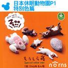 【日本休眠動物園P1特別色篇】Norns...
