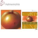 德國Hahnemuhle-Velour粉彩紙106-286-01 (24x32cm)-10張 / 本