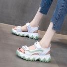運動涼鞋女學生2020夏天新款韓版網紅百搭休閒厚底鬆糕防滑鞋子女 快速出貨