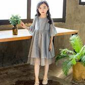 女童連身裙短袖兒童夏季韓版洋氣公主春裝蕾絲裙子