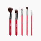 美國Sigma 副品牌 Practk All-Star Brush Set 臉部刷具組 眼部刷具 刷具5件組