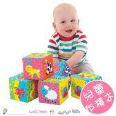 彩色方塊交通動物布積木 軟質搖鈴嬰兒益智玩具 6件組