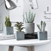 模擬植物裝飾假花擺件北歐盆栽綠植室內客廳多肉小盆景擺設 港仔會社