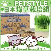 *WANG*【日本PetStyle】DIY貓草栽培組 超好種【補貨中】