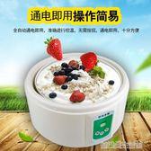 酸奶機家用全自動自制不銹鋼迷你玻璃分杯納豆米酒機 igo