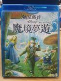 挖寶二手片-Q00-407-正版BD【魔境夢遊1 2D單碟】-藍光電影 迪士尼