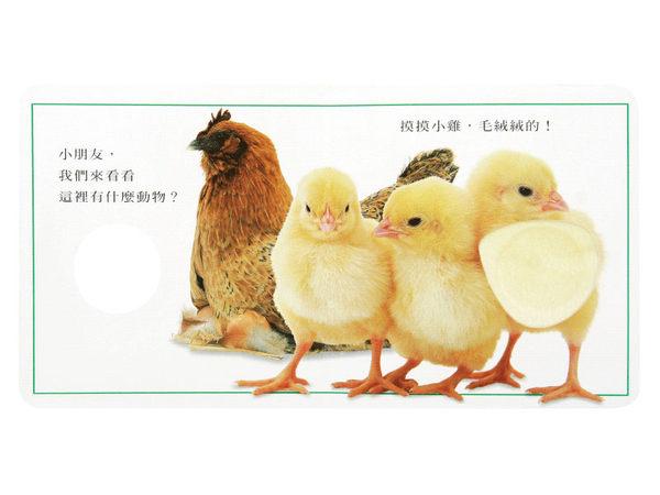 上誼/信誼 可愛的動物-觸覺書