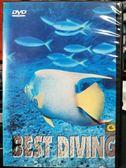 挖寶二手片-P09-147-正版DVD-電影【浪漫海洋風情 加勒比海篇】-