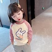 女童長袖t恤春秋純棉上衣短袖兒童洋氣小童夏裝女寶寶打底衫春裝T 艾瑞斯ATF「快速出貨」