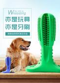 磨牙棒 狗狗耐咬磨牙棒大型犬幼犬小狗邊牧金毛牙刷刷牙神器寵物玩具用品