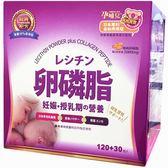 孕哺兒 卵磷脂多機能營養細末 經典配方 120+30包入 德國頂級膠原蛋白 金絲燕窩 珍珠粉