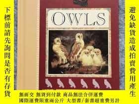 二手書博民逛書店精裝口袋書The罕見Little Book of OwlsY264589 Orion Publishing