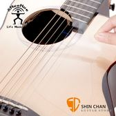 aNueNue 鳥吉他保護貼/防刮護板/面板保護貼) 透明3H硬化防磨防刮/保護琴面