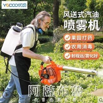 噴霧消毒機 手提風送式汽油噴霧器農用打機背負噴壺彌霧機高壓大棚養殖消毒 MKS阿薩布魯
