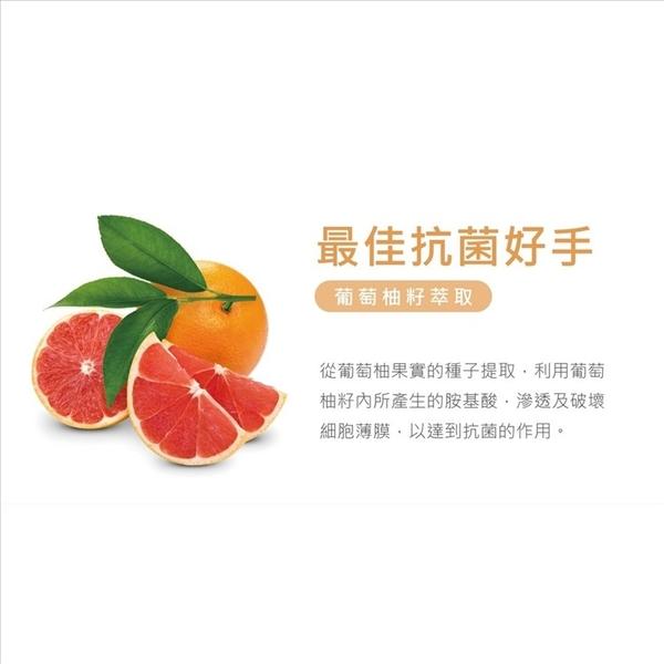 乾洗手 現貨限購五罐 250ml補充瓶 台灣製乾洗手 噴霧式乾洗手 現貨 蘭都 葡萄柚籽保濕噴霧乾洗