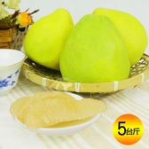 國家級59年老欉特選優品麻豆文旦精品禮盒5台斤