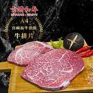 日本A4宮崎和牛頂級牛排片(300±20...