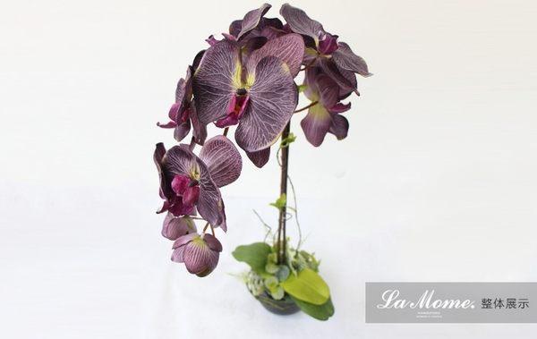 [協貿國際]#油畫蝴蝶蘭#深紫色/法式浪漫/高品質仿真花藝/樣板房會所專供