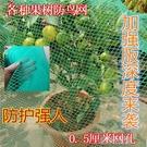 防鳥網罩櫻桃網果樹防鳥網果園尼龍網防護罩防雹網葡萄蔬菜家用網 快速出貨快速出貨
