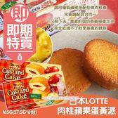 (即期商品) 日本LOTTE肉桂蘋果蛋黃派(盒)