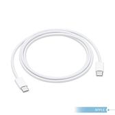 【APPLE蘋果適用】iPad Pro系列 / 雙USB-C 連接傳輸充電線 - 1公尺