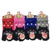 【KP】日本製 襪子 繽紛 貓咪 點點 兒童襪 童魔術 夾腳襪 親膚 棉13~18CM 四款選 DTT10000749