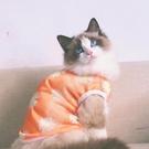 寵物背心防曬衣貓衣服狗衣服夏