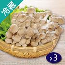 有機鴻喜菇(100g±5%/包)X3【愛買冷藏】